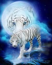 white tiger moon mixed media by carol cavalaris