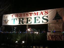 5 places to buy trees in needham needham ma patch