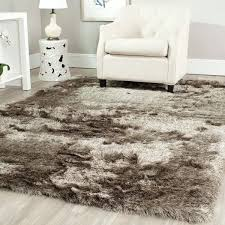 Decorative Rugs For Living Room 25 Best Shag Rugs Ideas On Pinterest Shag Rug Bedroom Rugs And