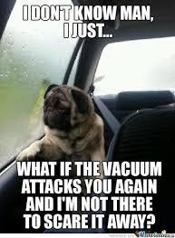 Sad Pug Meme - sad pug meme by mrsg84 memedroid
