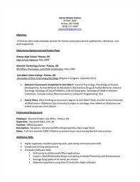 Resume Volunteer Experience Sample by A Href U003d