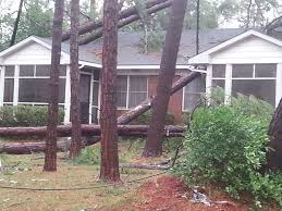 Water Gas And Light Albany Ga Dougherty County Declares State Of Emergency In Wake Of Powerful