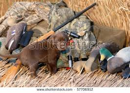 Duck Blind Images Duck Blind Stock Images Royalty Free Images U0026 Vectors Shutterstock