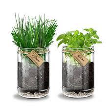 indoor herb garden kits gardening ideas