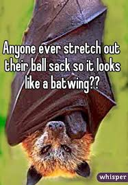ever stretch out their ball sack so it looks like a batwing