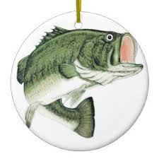sea bass ornaments keepsake ornaments zazzle
