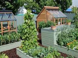 fabulous vegetable garden layout raised simple vegetable garden