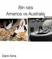Straya Memes - bin rats america vs australia dem bins meme on me me