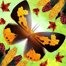 flutter butterfly sanctuary home facebook