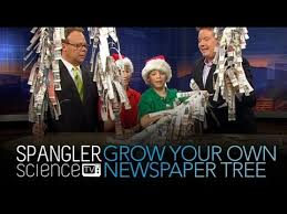 grow your own newspaper tree cool science experiment