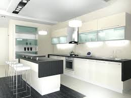 Black Kitchen Cabinet Ideas Contemporary White Kitchen Cabinets Custom Black And White Kitchen