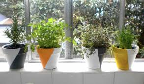 window sill herbs designs best 25 indoor herb planters ideas on