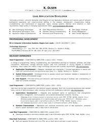 finance resume template resume exles programmer employment education skills graphic