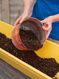 grow a window box vegetable garden how tos diy