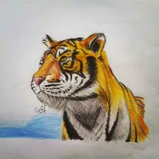myinstapic stunning tiger art by saif