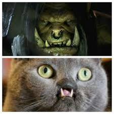 Warcraft Memes - la naissance de world of warcraft meme by warsoft2b memedroid