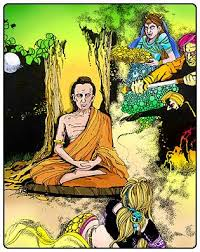 buddhist studies primary level unit 3 the bodhi tree