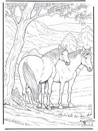 coloring sheets of a horse realistic horse coloring pages getcoloringpages com
