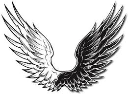 black and white vector wings black and white vector wings free