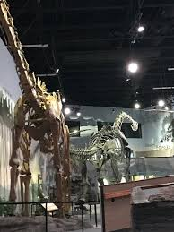 museum of ancient lehi ut top tips before you go with