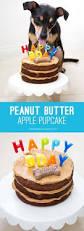 dog homemade cupcakes or cake peanut butter oatmeal egg