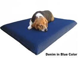 memory foam dog bed and orthopedic pet pillow for less at dogbed4less
