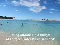 Atlantis Comfort Suites Top 20 Things To Do At Atlantis Paradise Island Resort Paradise