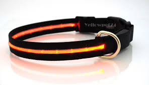 led dog collar supplier from china shw5 z led pet products