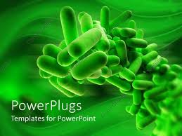 free templates for powerpoint bacteria powerpoint template 3d close up of isolated green bacteria on green