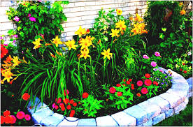 small gardens ideas on a budget for affordable garden design the