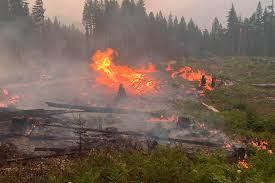Graham Wa Wildfire by News Courier Herald