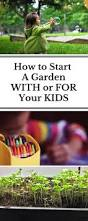 17 best images about edible schoolyards on pinterest garden