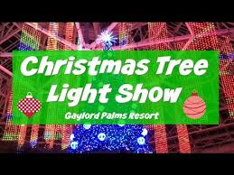christmas tree light show gaylord palms resort kissimmee