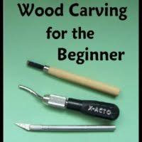Wood Carving For Beginners Courses by Chris Pye U0027s Woodcarving Course U0026 Reference Manual A Beginner U0027s
