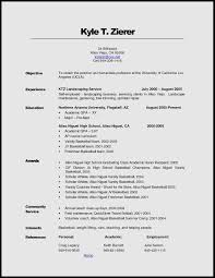 what to put in your resume resume cover letter shireweb biz