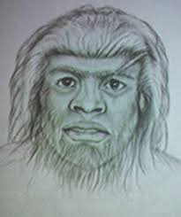 psychic bigfoot hunter claims to see sasquatch sketch looks human