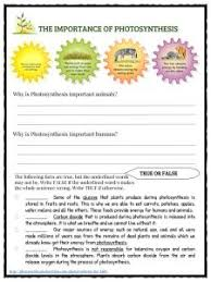 photosynthesis facts information u0026 worksheets for kids