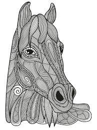 493 best coloring horse zebra images on pinterest coloring