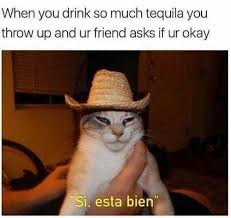 Asian Friend Meme - when you drink so much tequila you throw up and your friend asks if