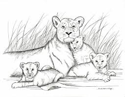 mother baby lions drawing print