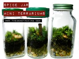 spice jar mini terrariums red handled scissors