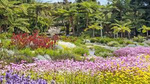 Australian Garden Flowers by Four Places To See Australian Wildflowers Near Sydney Concrete