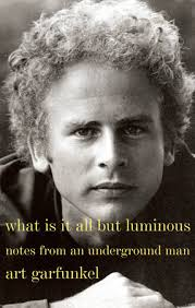 what is it all but luminous by garfunkel penguinrandomhouse