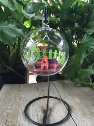 air plant terrarium kit with free stand hanging glass terrarium