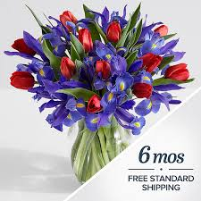plant of the month club flowers of the month club monthly fresh flower delivery