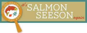Ballard Locks Hours Of Operation Salmon Seeson Ballard Locks Salmon Viewing