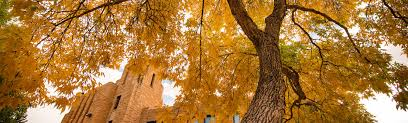 in fall international students admissions university of wyoming