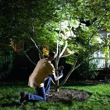 How To Choose Landscape Lighting Low Voltage Landscape Lighting Wiring Choose Landscape Lights Low