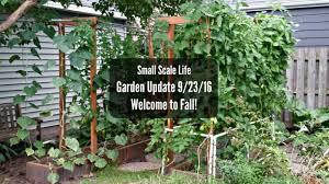 Vertical Garden Trellis - garden update 9 23 16 small scale life