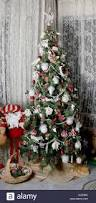 too big christmas tree house stock photos u0026 too big christmas tree